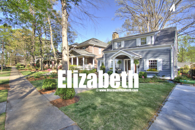 Elizabeth Homes for Sale in Charlotte